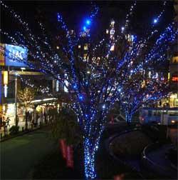 クリスマス2006年