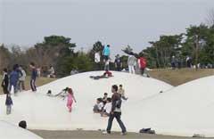 昭和記念公園フワフワドーム