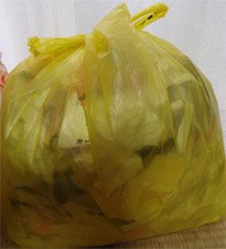 ゴミの有料化