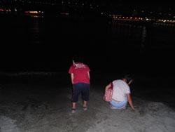 海の灯まつりinお台場2008