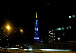 東京タワーダイヤモンドヴェール