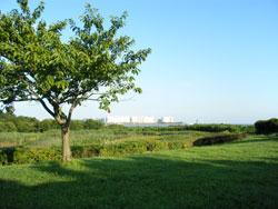 葛西臨海公園<br />