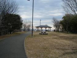 桜ケ丘公園 ゆうひの丘